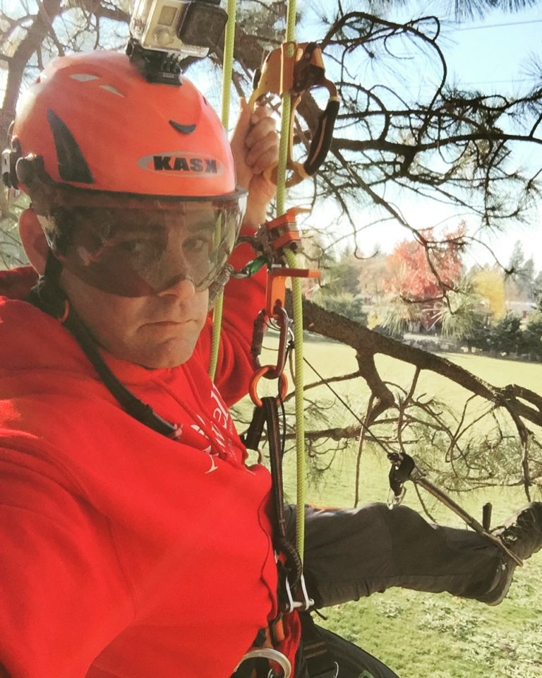 Sean Price, a man wearing a helmet and safety glasses, is suspended in a tree, wearing a harness and rigging ropes.